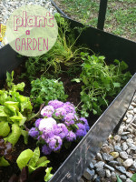 Planting a Garden with Little Ones